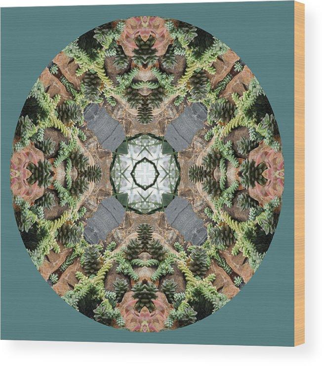 Desert Wood Print featuring the photograph Desert Mandala by Keri Renee