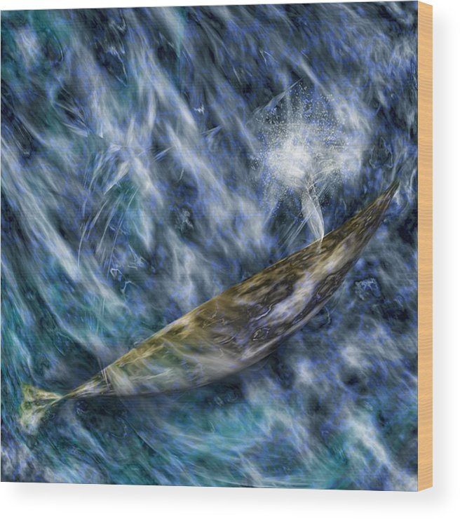 Whale Wood Print featuring the digital art Water World Two by Gae Helton