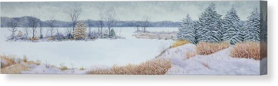 Winter Lake And Cedars Canvas Print
