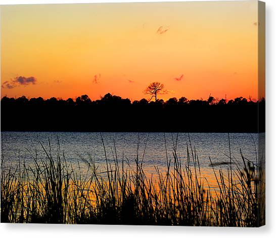St. Lucie County Canvas Print - Above The Rest by Grace Dillon