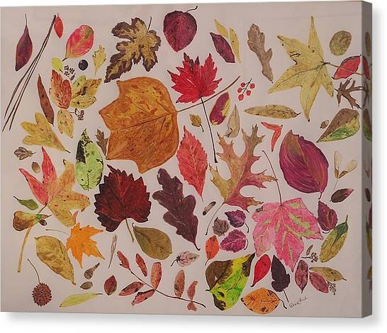 Autumn Leaves Canvas Print by Diane Frick