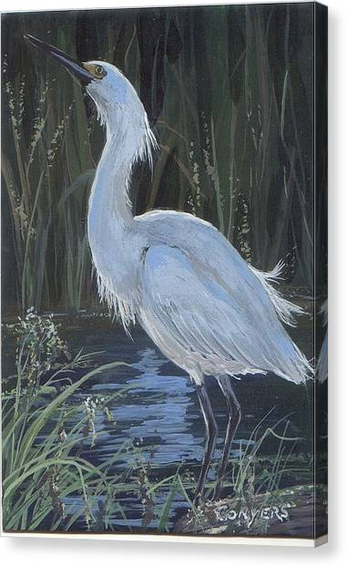 Egret Canvas Print by Peggy Conyers