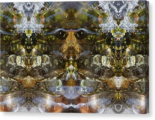 Ganesh Canvas Print by Shawn Young