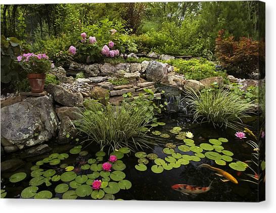 Garden Pond - D001133 Canvas Print