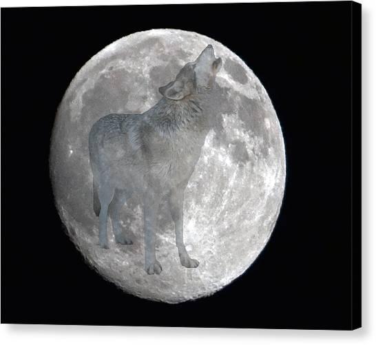 Howl At The Moon Canvas Print