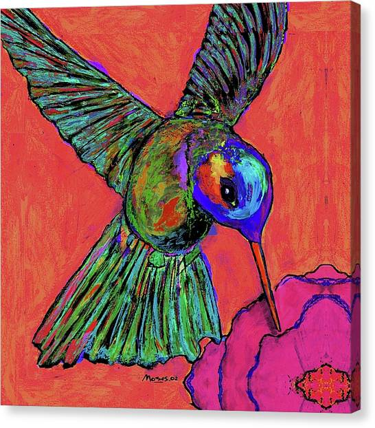 Hummingbird On Red Canvas Print