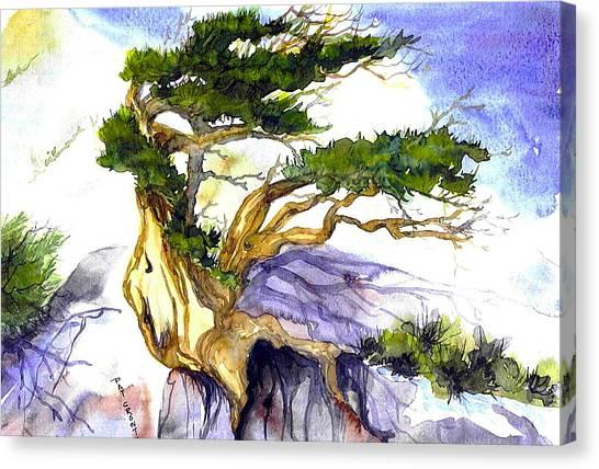Juniper Blow Canvas Print