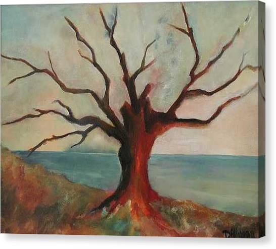Lone Oak - Gulf Coast Canvas Print by Deborah Allison