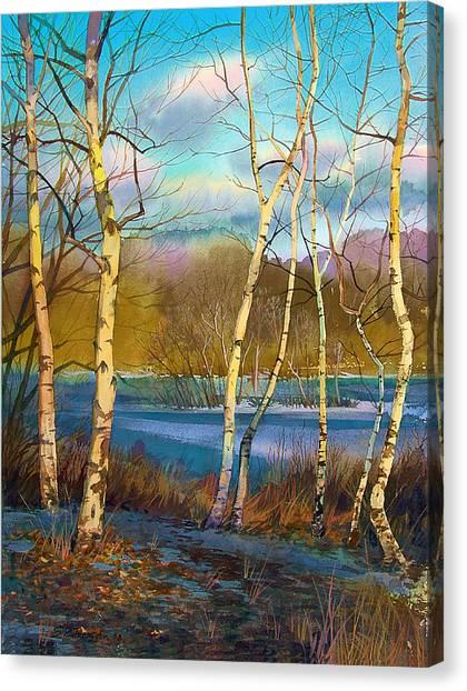 March. Birches Canvas Print