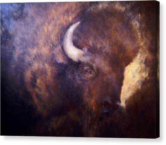 Old Bison Canvas Print by Renee Shular