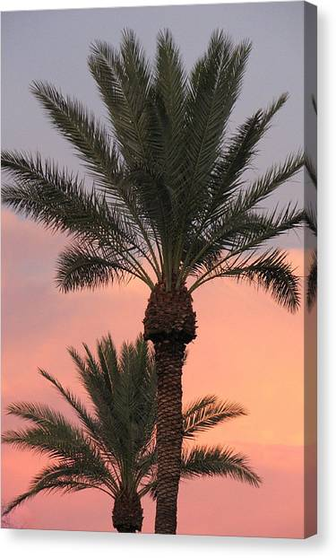 Precious Palm Canvas Print