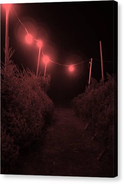 Red Night Canvas Print by John  Bichler
