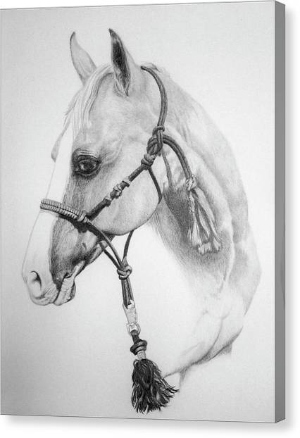 Barrel Racing Canvas Print - Shes The Gentle One by Tracy L Teeter