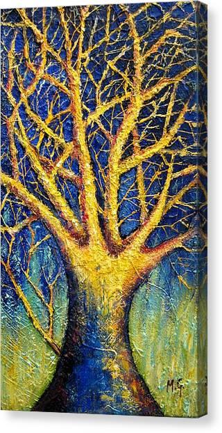 Wonder Tree Canvas Print by Mirjana Gotovac