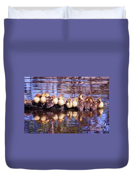 Baby Ducks On A Log Duvet Cover by Stephanie Hayes