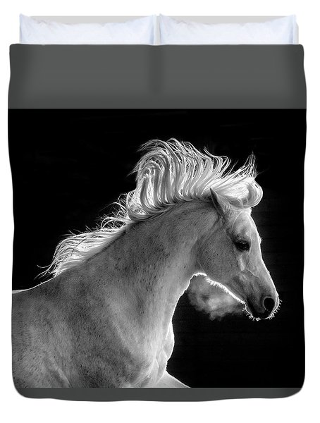 Backlit Arabian Duvet Cover by Wes and Dotty Weber