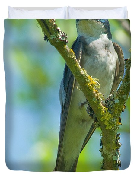 Duvet Cover featuring the photograph Bird In Tree by Rod Wiens