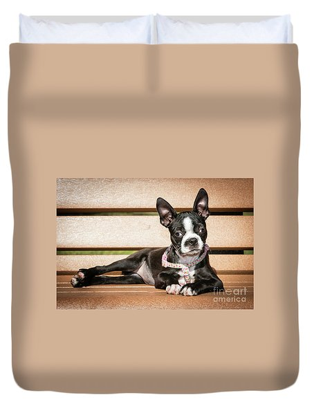 Boston Terrier Puppy Relaxing Duvet Cover by Stephanie Hayes