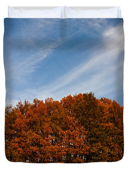Compact Forest Duvet Cover by Evgeni Dinev