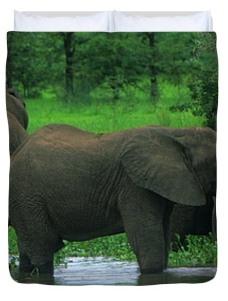 Elephant Shower Duvet Cover