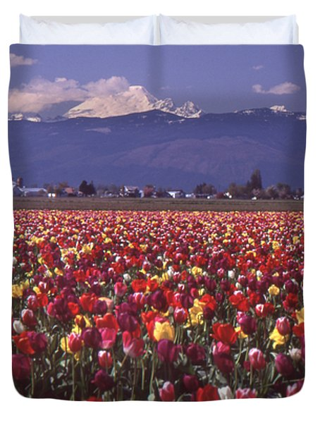 Field Of Tulips And Mount Baker Duvet Cover