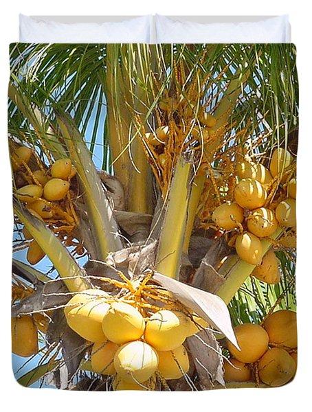 Golden Coconuts Key West Duvet Cover