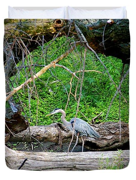 Heron Habitat Duvet Cover by Sue Stefanowicz