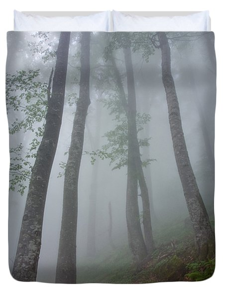 High Forest Duvet Cover by Evgeni Dinev
