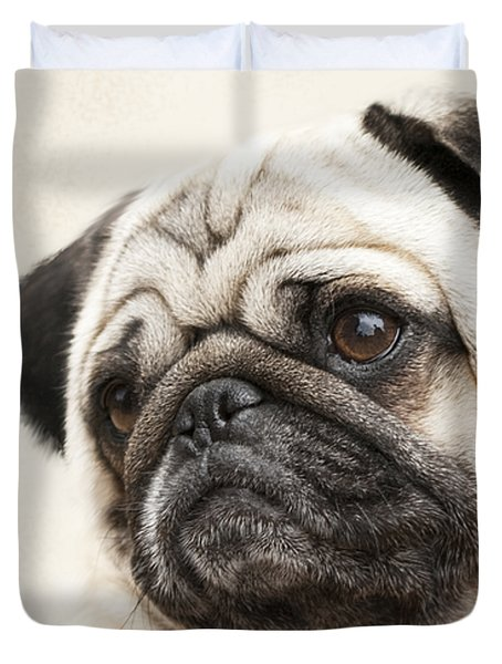 L-o-l-a Lola The Pug Duvet Cover by Kathy Clark