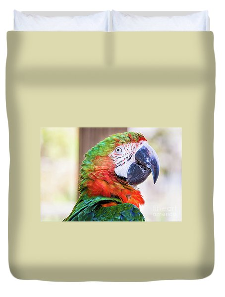 Parrot Duvet Cover by Stephanie Hayes