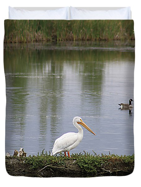 Duvet Cover featuring the photograph Pelican Reflection by Alyce Taylor