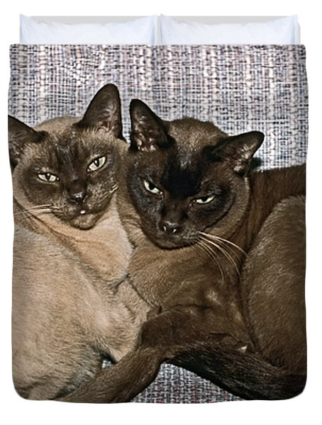 Tonkinese Pals Duvet Cover by Sally Weigand
