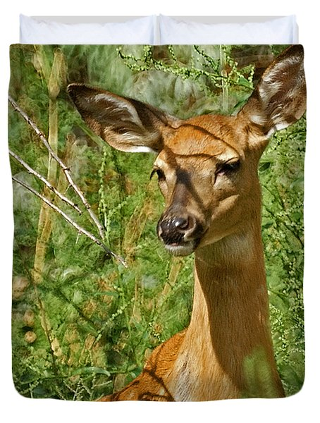 Whitetail Doe Painterly Duvet Cover by Ernie Echols