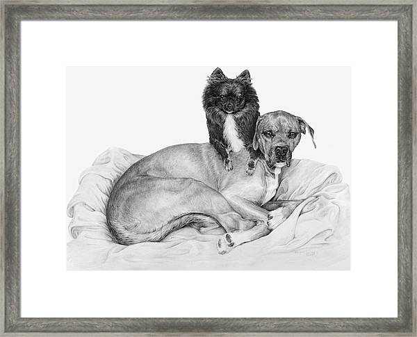 A Shoulder To Lean On Framed Print