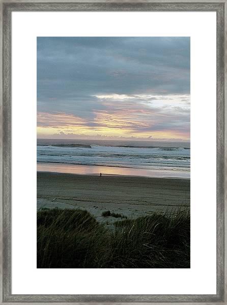 Oregon Coast 1 Framed Print