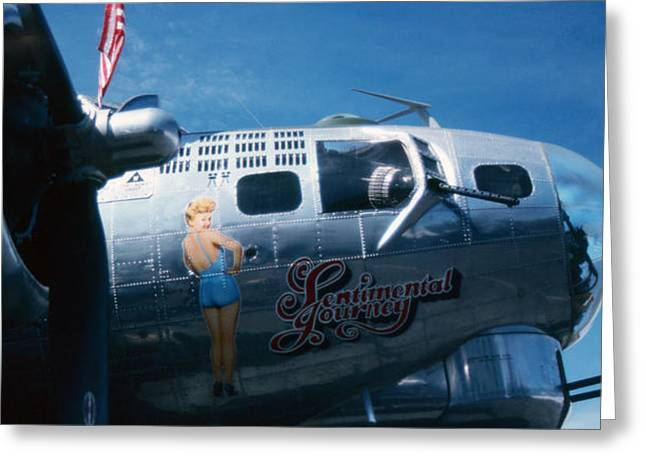 Rita B17 Greeting Card