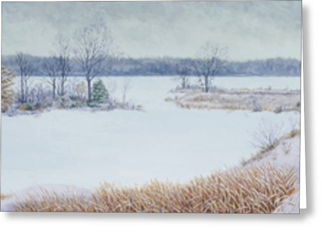 Winter Lake And Cedars Greeting Card