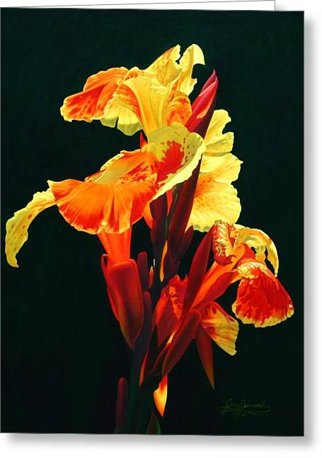 Yellow Cannas Greeting Card