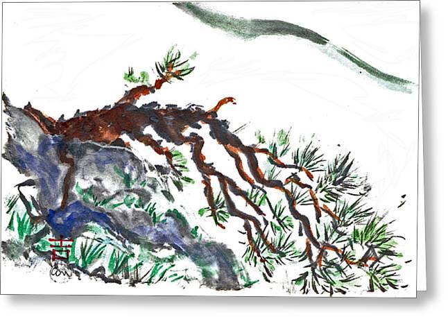 Mountain Pine Greeting Card by Ellen Miffitt