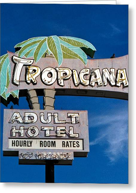Tropicana Greeting Card by Matthew Bamberg