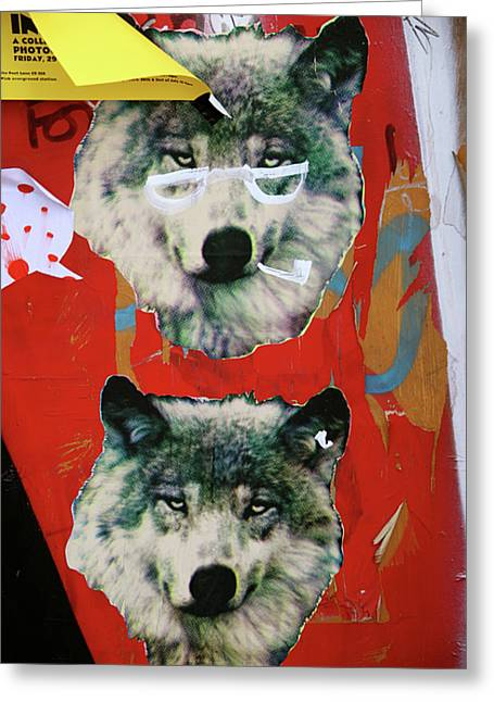 Greeting Card featuring the photograph Woof Woof by Jez C Self