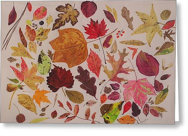 Autumn Leaves Greeting Card by Diane Frick