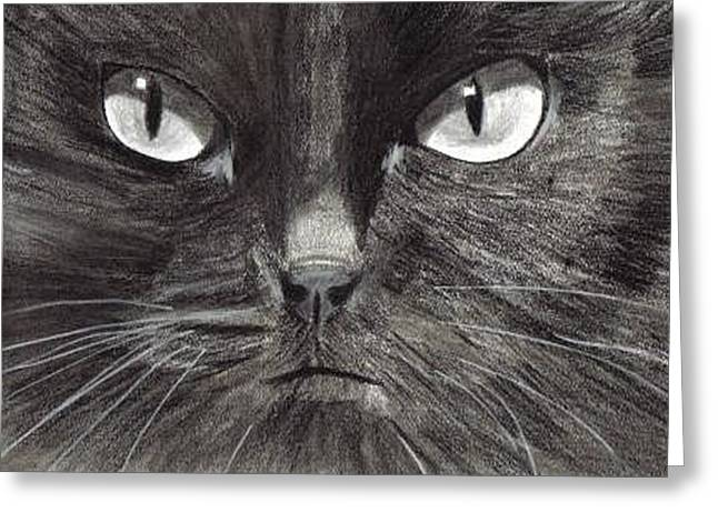 Black Cat Charcoal Drawing Greeting Card by Joshua Hullender