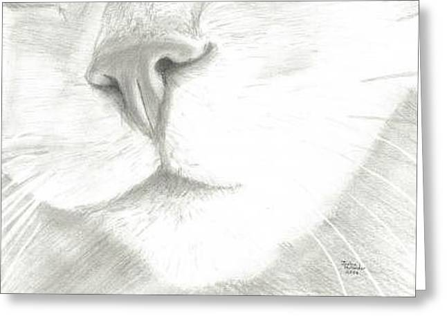 Cat Nose Greeting Card by Joshua Hullender