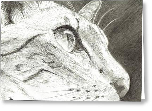 Cat Side Profile Greeting Card by Joshua Hullender