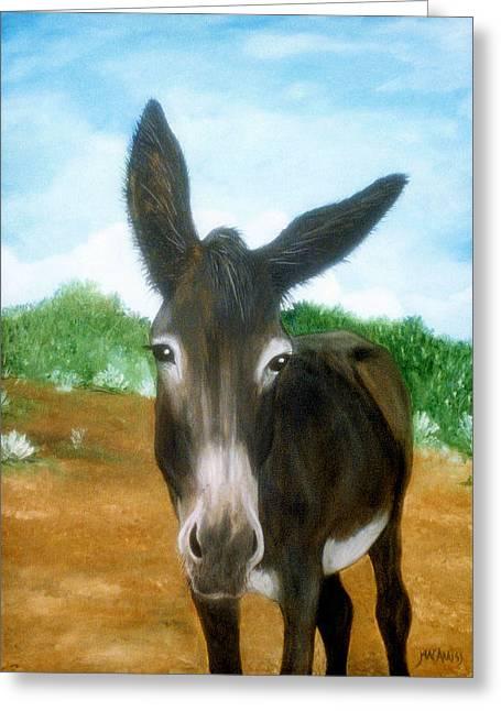 Chimayo Mule Greeting Card