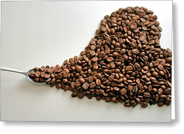 Coffee Lover Greeting Card by Stephen Mitchell