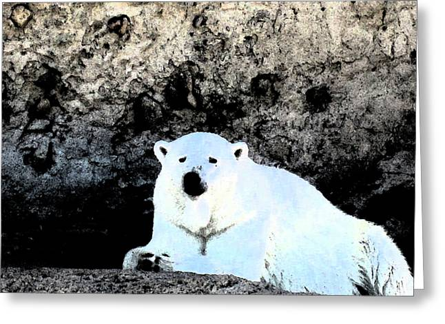 Cold Night Greeting Card by Tammy Sutherland