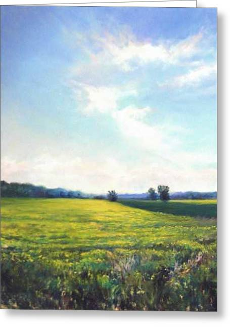 Field Of Yellow Greeting Card by Cathy Boyd