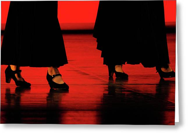 Greeting Card featuring the photograph Flamenco 2 by Pedro Cardona